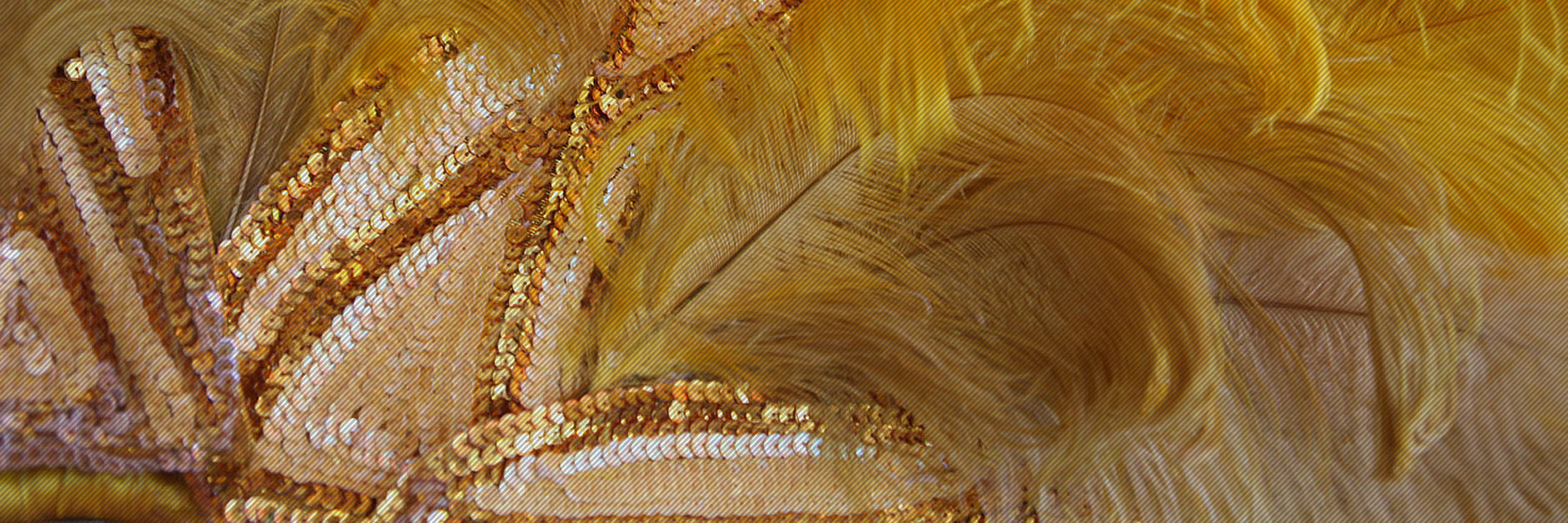 Events Feathers En